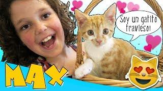 😸 ¡¡Vuelve la FELICIDAD con MAX!! 😻 💖 ¡NUESTRA REACCIÓN al conocer a nuestra NUEVA MASCOTA! thumbnail