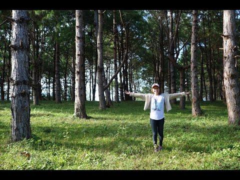 Exploring Philippines Mountain Nature - Don Salvador Benedicto near Bacolod City