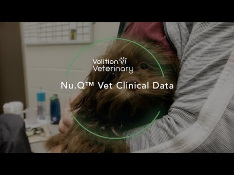 Volition Veterinary Diagnostics Development LLC Announces Product Data Regarding its Nu.Q™ Vet Cancer Screening Test in Lymphoma and Hemangiosarcoma to be Presented at the 2020 VCS Virtual Annual Conference
