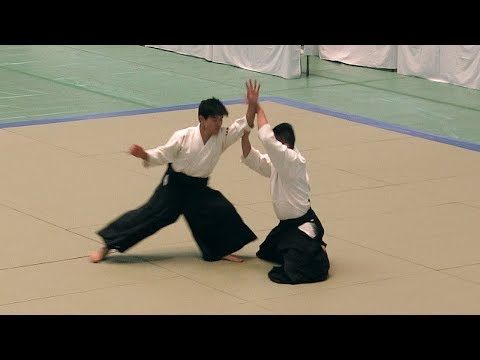 FINALLY NEW Steven Seagal Aikido vs Real Punches! TMA