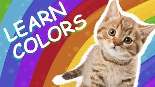 Super Baby Channel | Learn Colors With Cats for Kids | Cats Funny and Colors | Surprise