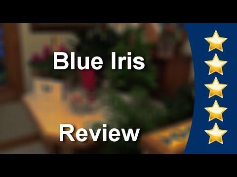Blue Iris Grand Rapids Wonderful Five Star Review by Jeska Jane