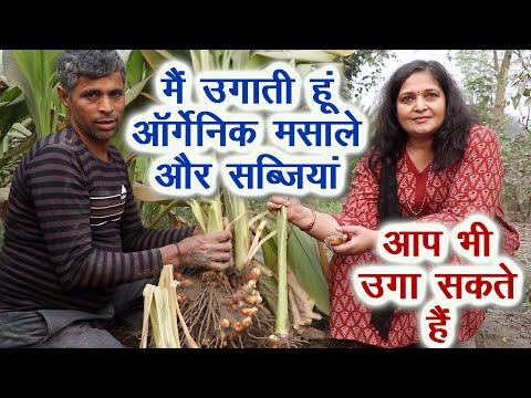 इस महिला का ऑर्गेनिक फार्म सबके लिए रोल मॉडल है  Model Organic Farm by Woman Farmer