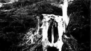 Sinistra - Destruction of Sound (Official Video)