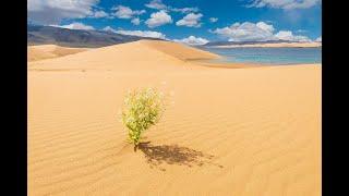 Introducing Mongolia