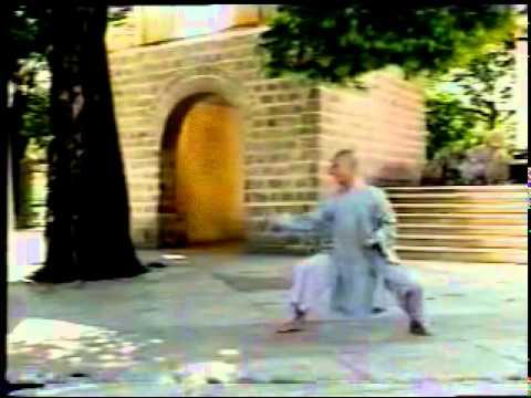 Võ BÌNH ĐỊNH - Vietnam's martial arts