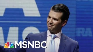 Reports: A New Concern For President Donald Trump Jr. | The Last Word | MSNBC thumbnail