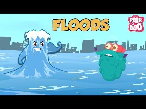 Floods - The Dr. Binocs Show