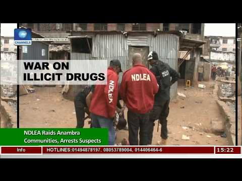 NDLEA Raids Anambra Communities For Hard Drugs, Arrests Suspects |News Across Nigeria|