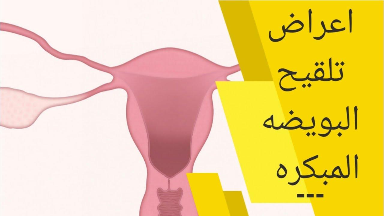 أعراض تلقيح البويضة في اليوم الأول علامات تلقيح البويضة وانغماس الجنين قبل نزول الدورة واختبار الحمل Youtube