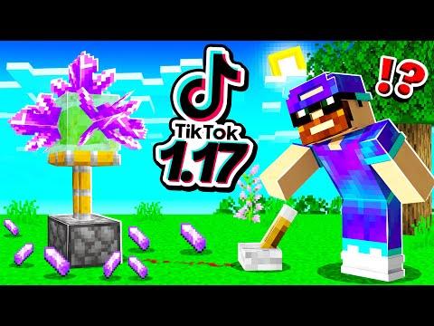 Je teste des HACKS TikTok 1.17 secrets sur Minecraft !