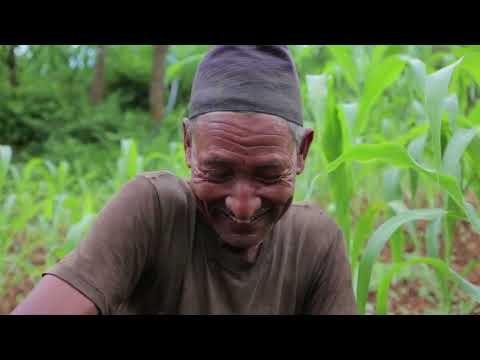 GSFA 2016 | HSBC Water Programme / WaterAid | Aftershock: Nepal's untold water story