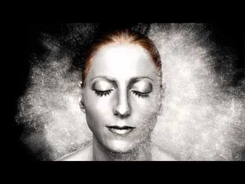 Telefon Tel Aviv - The Birds (Ellen Allien Remix)