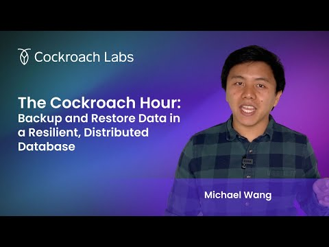 How to Backup Data & Restore Data in a Distributed Database