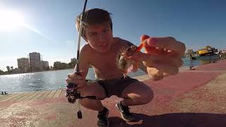 Spinning ligero y la ''ESENCIA'' del Rockfishing