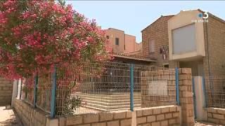 Xylella fastidiosa : pour la première fois un laurier rose infecté en Corse