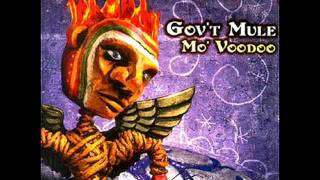 Watch Govt Mule Ill Be The One video