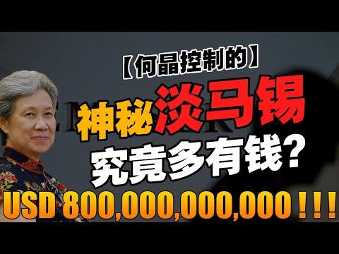 最成功的主权基金,竟是淡马锡?建国不久的新加坡,哪来这么多钱?【华人百科 EP20】