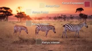 Peinture Couleurs du Monde - KENYA - Dulux Valentine
