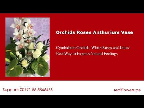 Orchids Roses Anthurium Fresh Flower Delivery at Dubai, Sharjah
