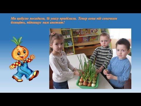 Проект по экологическому воспитанию в детском саду