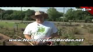 Organic Gardening in Georgia