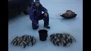 ЗИМНЯЯ РЫБАЛКА. щука, окунь, плотва  на  червя.   fishing in the winter.  fishing for big perch