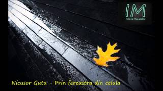 Nicusor Guta - Prin fereastra din celula