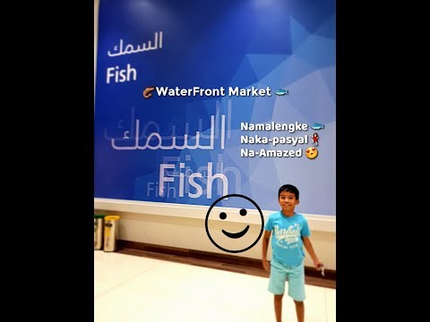 Dubai WaterFront Market New Fish Market 2017 09 02