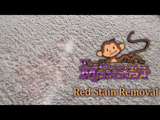 The Cleaning Monkey - How To Clean Red Stains