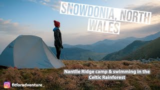 Nantlle Ridge Wild Cąmp & Swimming in the Celtic Rainforest | Snowdonia, North Wales