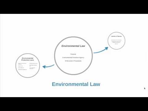 Environmental Law (Intro)
