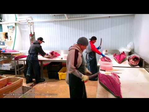 Visiting The New Fulton Fish Market, New York, 4K + DJI Osmo