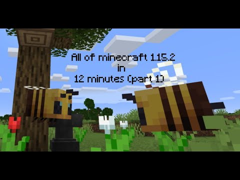 All Of Minecraft 1.15.2 In 12 Minutes (party 1 Of 2)