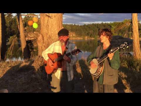 Cosmo Sheldrake - Tardigrade Song (Acoustic)
