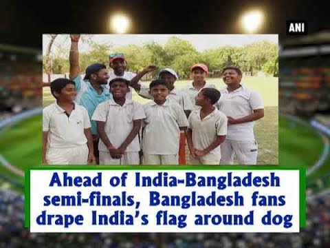 Ahead of India-Bangladesh semi-finals, Bangladesh fans drape India's flag around dog - ANI News