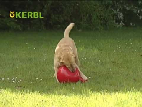 kerbl-hundeball-rot-art-82379