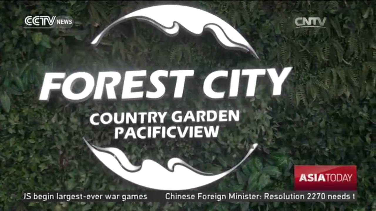 Image result for RM100 billion Forest City project