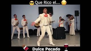 Dulce pecado por Mariachi Viva México