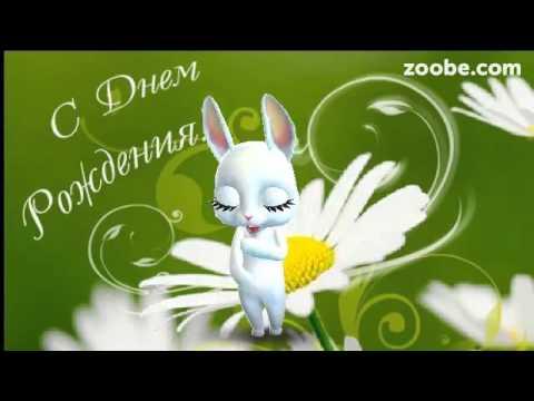 Зайка ZOOBE на русском «С днём рождения» дорогая подружка - Как поздравить с Днем Рождения