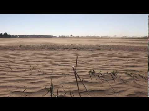 Trockenheit: Sandwüste 25 Kilometer vor Berlin