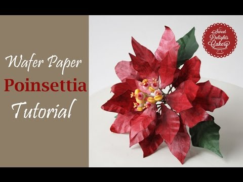 Wafer Paper Poinsettia Trailer Youtube