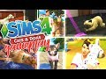 THE SIMS 4 CATS & DOGS   EARLY ACCESS GAMEPLAY   PREGNANCY, BIRTH, ADOPTION, VET CLINIC & MORE