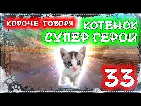 КОРОЧЕ ГОВОРЯ, БЕЗДОМНЫЙ КОТЕНОК СУПЕР ГЕРОЙ 33 [От первого лица] Бездомный щенок