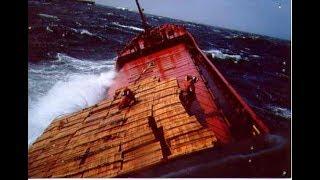 ECDIS Navi Sailor 3 chast  (Video Training for seaman )