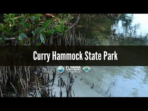 firsthand florida fun  curry hammock state park firsthand florida fun  curry hammock state park   youtube  rh   youtube