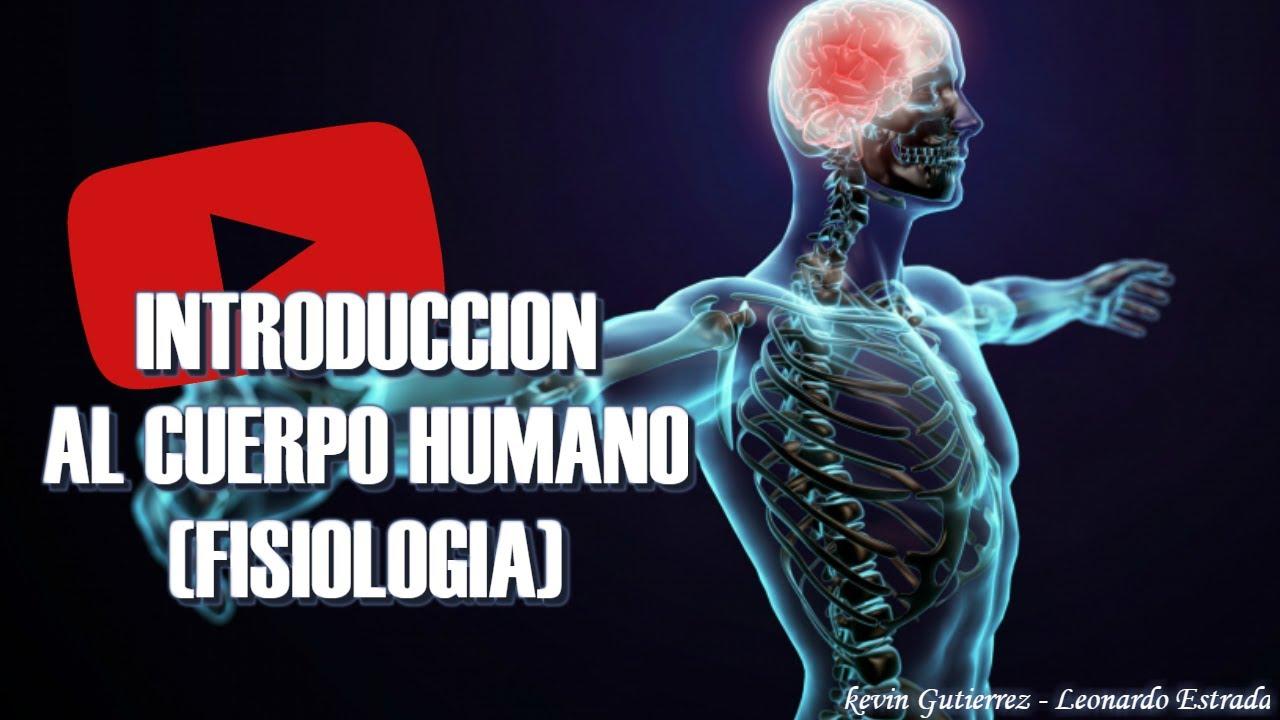 INTRODUCCIÓN AL CUERPO HUMANO. (FISIOLOGÍA) - YouTube