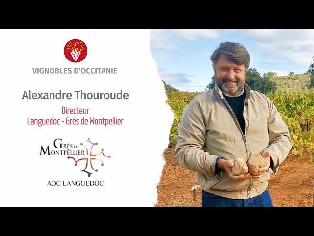 Alexandre Thouroude, directeur de l'AOC Grés de Montpellier
