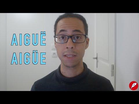 LMEJ#29 - Aigüe