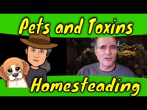 Pets and Toxins on the homestead